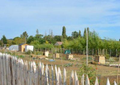 Parcelles pour jardiner aux jardins partagés des Portes du Tarn