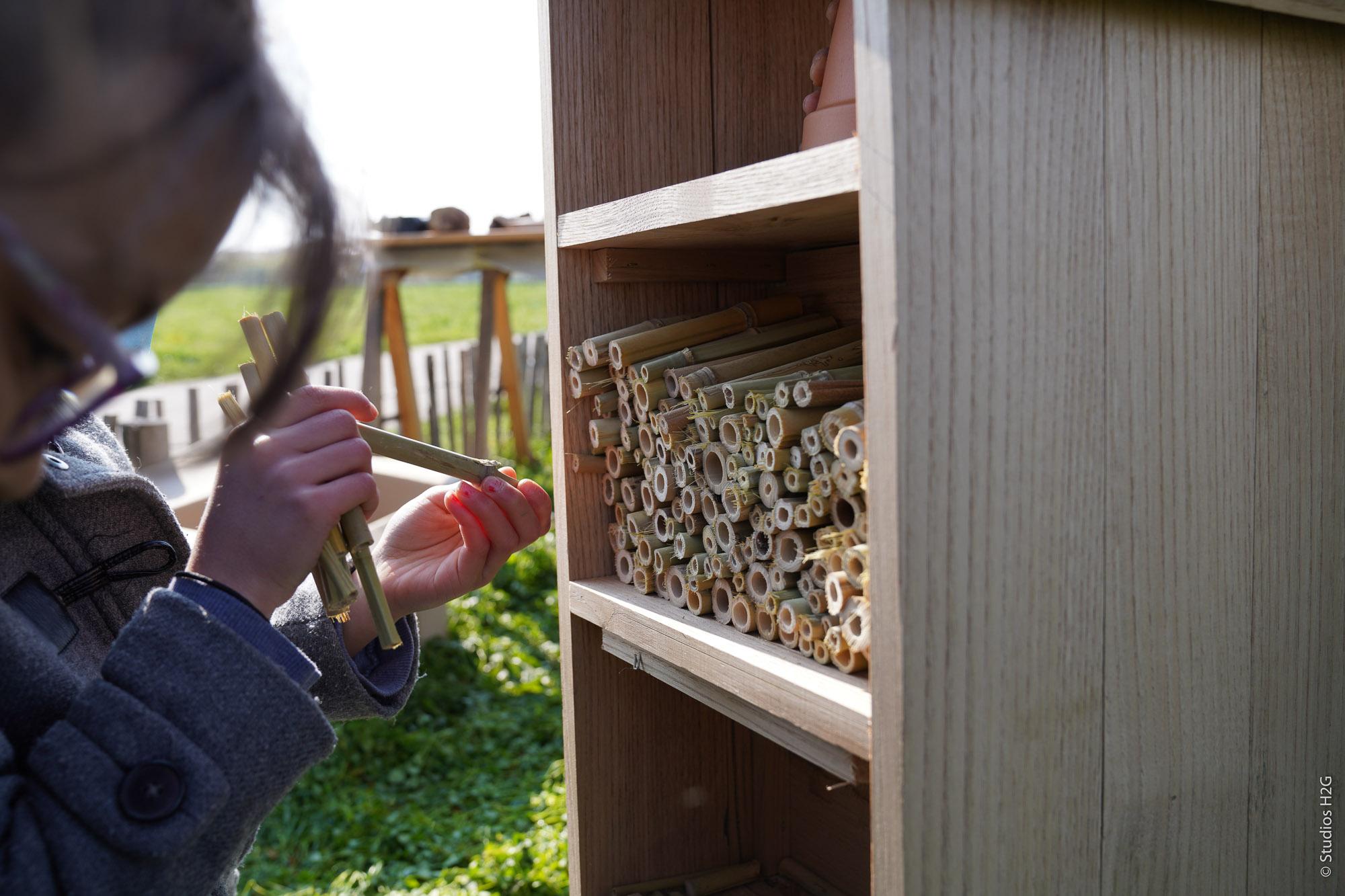 Un hôtel à insectes sur le parc des Portes du Tarn
